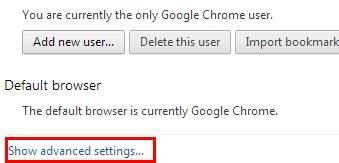 来自浏览器的Gmail密码破解程序 - 选择高级设置