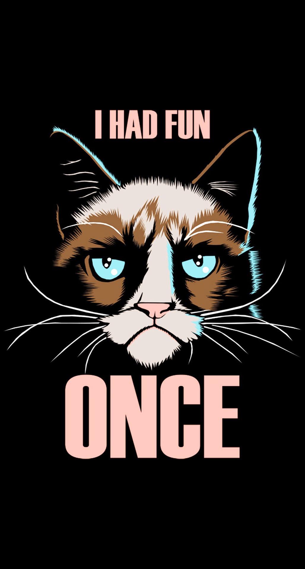 20个有趣的iphone壁纸 - 脾气暴躁的猫
