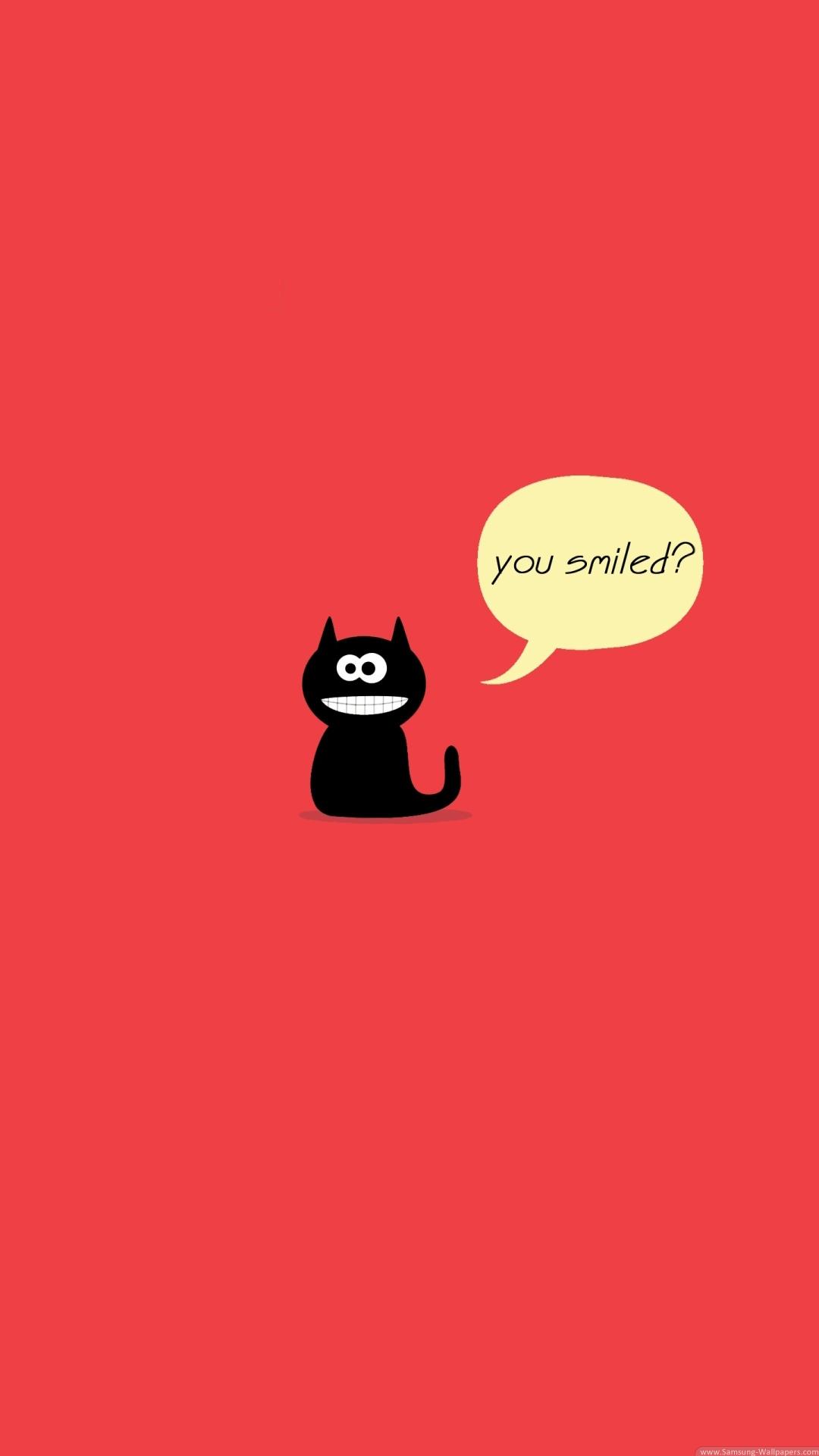 20个有趣的iphone壁纸 - 可爱的猫咪