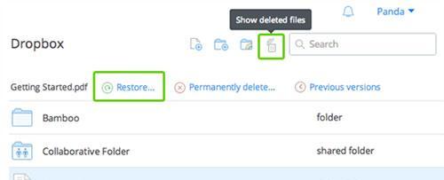 恢复已删除的文件dropbox第3步