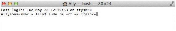 如何强制清除Mac上的垃圾箱