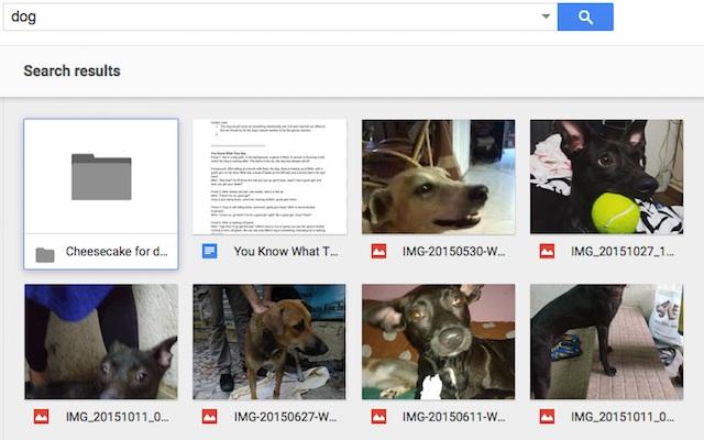 页面在搜索框中显示键入文本的搜索结果
