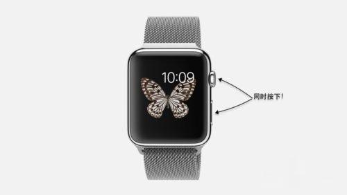 Apple Watch开机修复-1